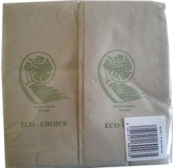 Recycled Paper Serviettes: Eco Choice 100% Recycled Paper Serviettes - Dinner